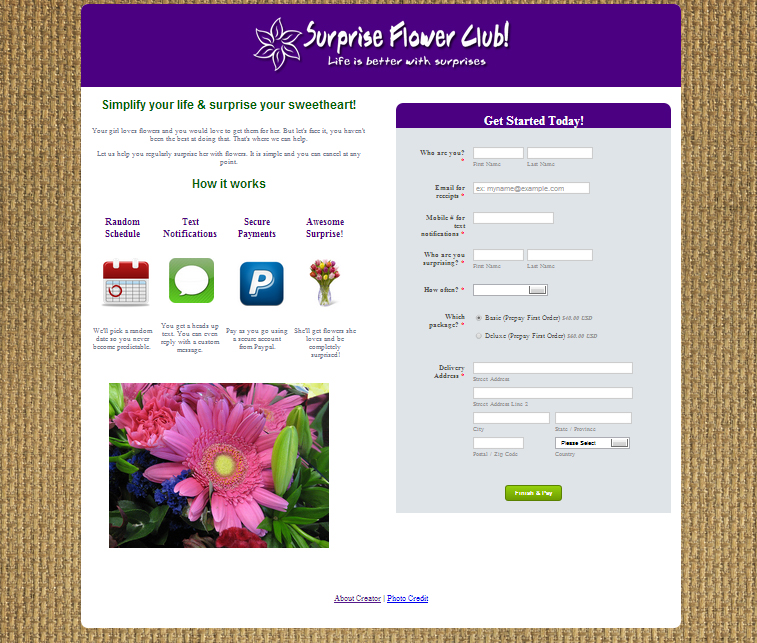 surprise-flower-club-website-v2